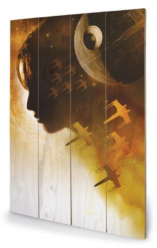 Star Wars Rogue One - Jyn Silhouette Cartel de madera