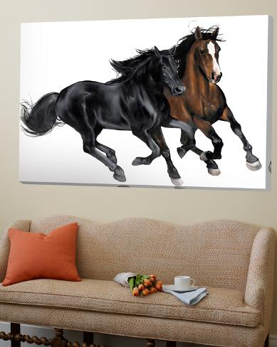 Black & Brown Horse Loft Art