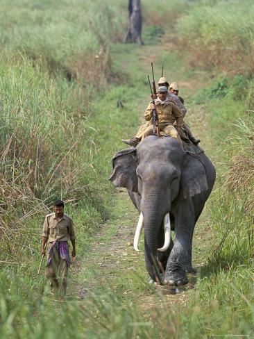 Game Guards Patrolling on Elephant Back, Kaziranga National Park, Assam State, India Photographic Print