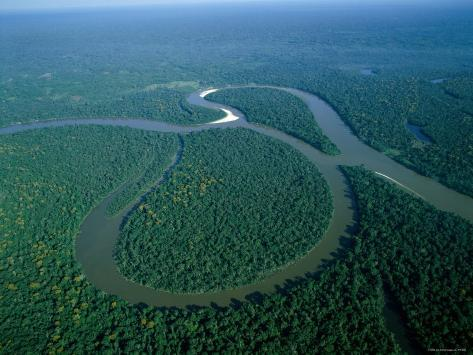 Amazon River, Amazon Jungle, Aerial View, Brazil Photographic Print