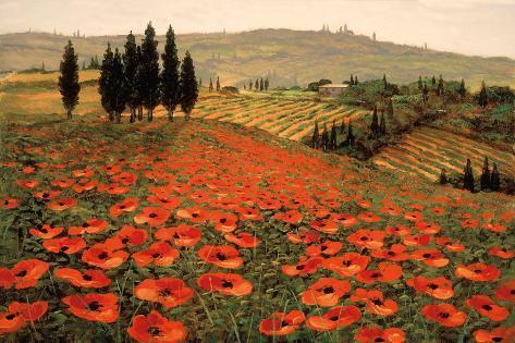 Hills of Tuscany I Art Print