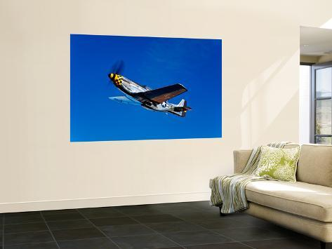 A P-51D Mustang Kimberly Kaye in Flight Wall Mural