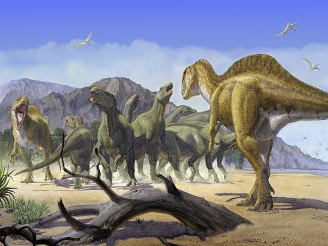 Altispinax Dunkeri Dinosaurs Attack a Group of Iguanodon Photographic Print