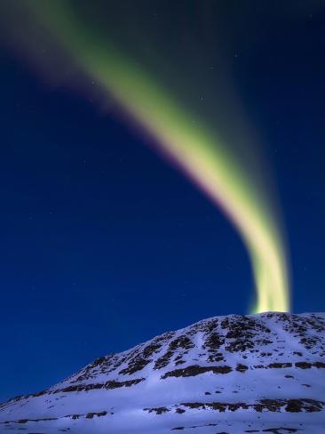 An Aurora Borealis Shooting Up from Toviktinden Mountain, Norway Photographic Print