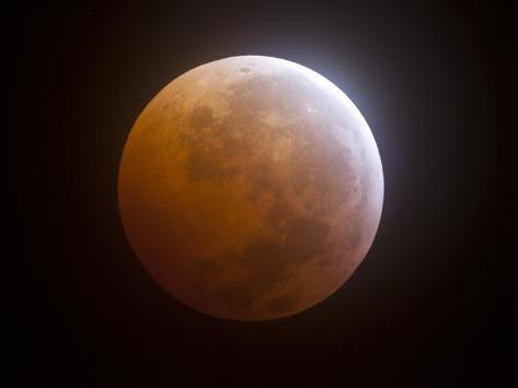 Lunar Eclipse Photographic Print