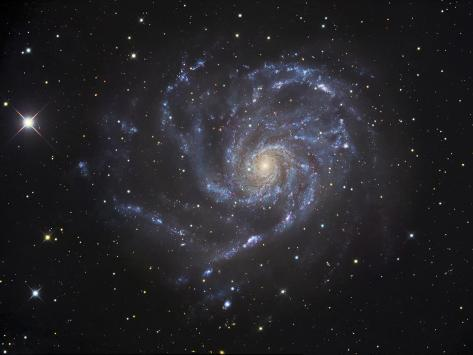 The Pinwheel Galaxy Photographic Print