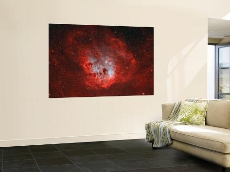 The Tadpole Nebula Wall Mural