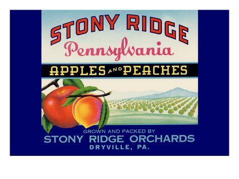 Stony Ridge Pennsylvania Apples and Peaches Art Print