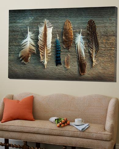 Feather Collection I Loft Art
