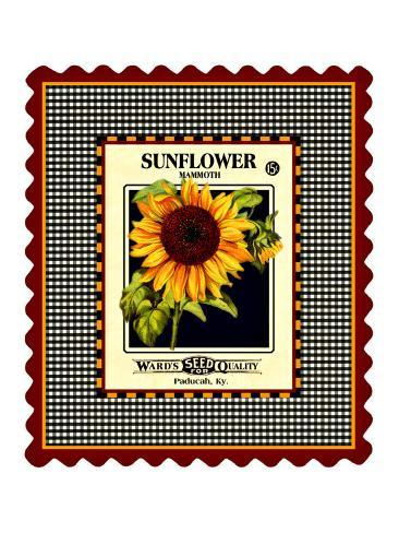 Sunflower Seed Pack Stampa giclée