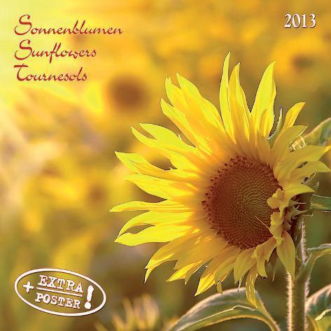 Sunflowers - 2013 Wall Calendar Calendars