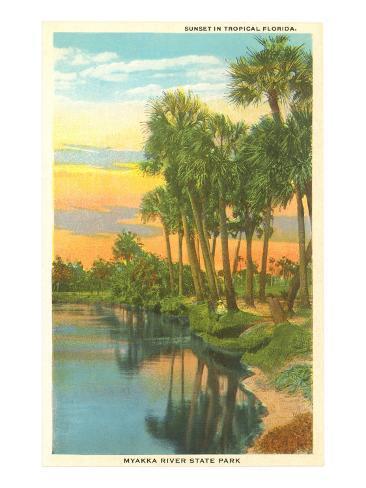 Sunset in Tropical Florida, Myakka River State Park Art Print
