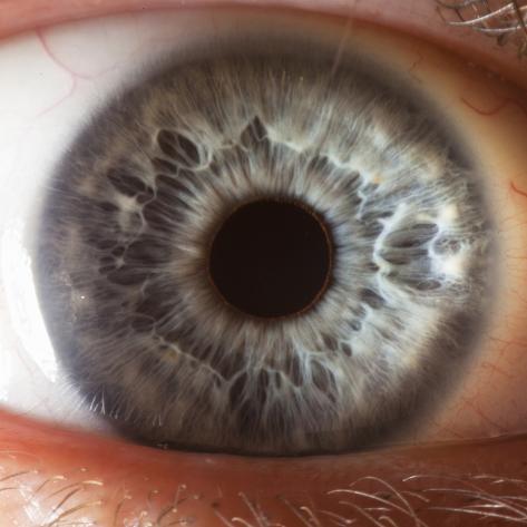 Close Up of Human Eye Photographic Print