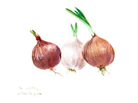 Onions 2 Taidevedos