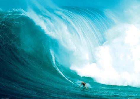 Surfista de olas Póster de gran tamaño