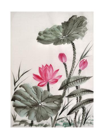 Watercolor painting of lotus flower prints by surovtseva at watercolor painting of lotus flower mightylinksfo