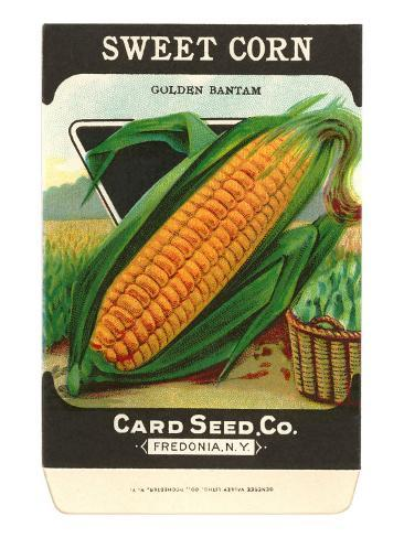 Sweet Corn Seed Packet Taidevedos