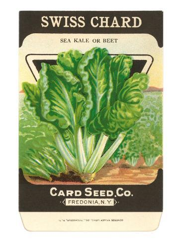 Swiss Chard Seed Packet Taidevedos