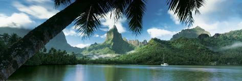 Tahiti - Opunohu Bay Poster