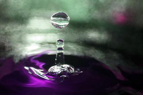 Grape Drink Drop III Photographic Print