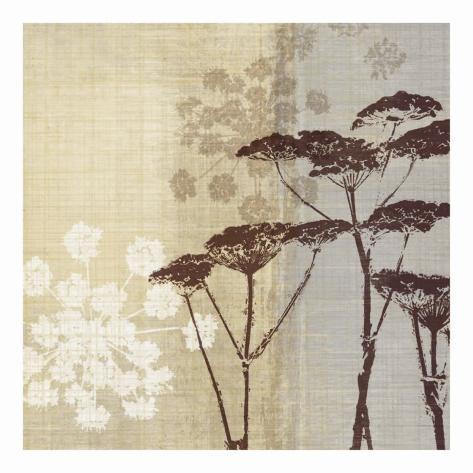 Lace II Art Print