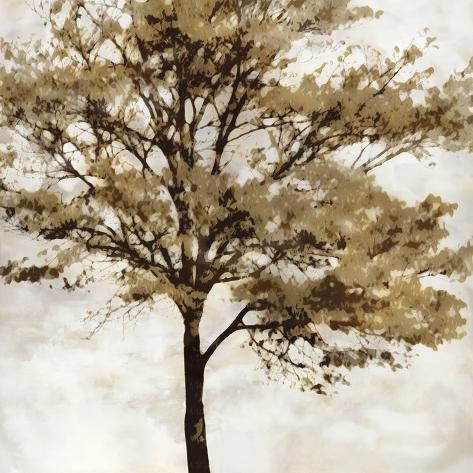 Fall Reflect Giclee Print
