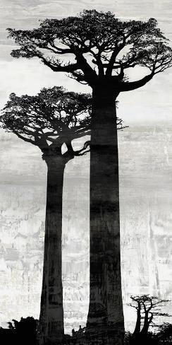 Manakara - Dawn Giclee Print