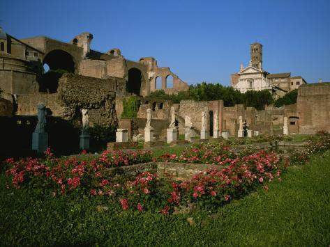 The Garden of the Vestal Virgins in the Roman Forum Photographic Print