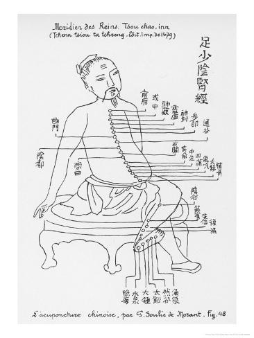 Acupuncture the Meridian of the Loins Giclee Print