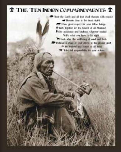 Ten Indian Commandments Native American Sitting Art Poster Print Mini Poster