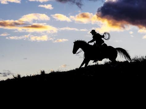 Cowboy in Silhouette with Sunset Stampa fotografica