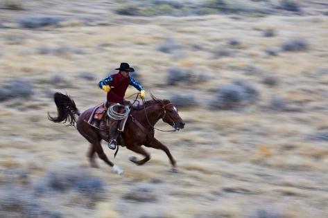 Cowboy Riding the Range Stampa fotografica