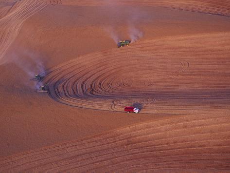 View of Combines Harvesting Wheat, Palouse, Washington, USA Photographic Print
