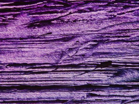 Textured Background Photographic Print