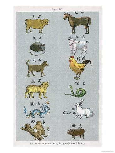 The 12 Creatures of the Chinese Zodiac Positioned in Opposing Pairs Giclee Print