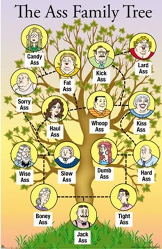 The Ass Family Tree Poster