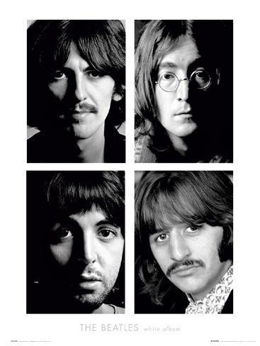 The Beatles-White Album Art Print