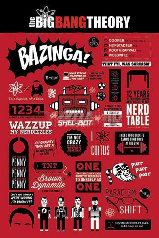 The Big Bang Theory Infographic Poster