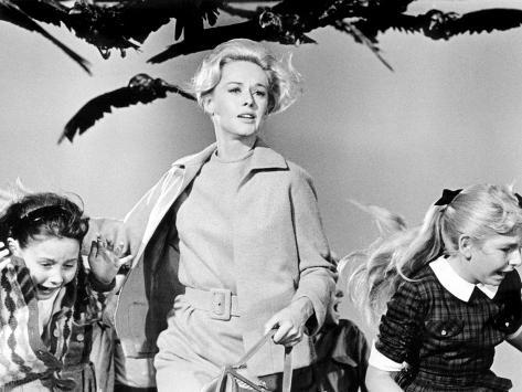 The Birds, Tippi Hedren, 1963 Photo