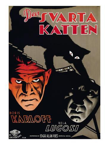 The Black Cat, (aka Den Svarta Katten), Boris Karloff, Bela Lugosi, 1934 Photo