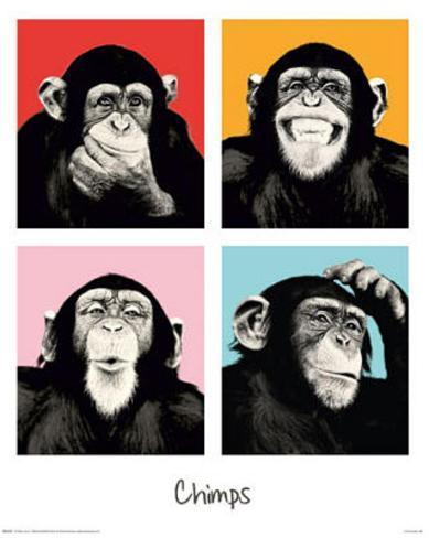 The Chimp Pop Art Print Poster Minipóster