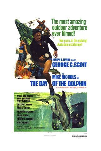 The Day of the Dolphin Art Print