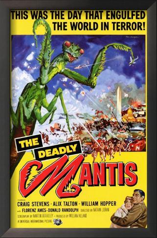The Deadly Mantis Impressão artística emoldurada