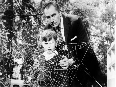 The Fly, Charles Herbert, Vincent Price, 1958, Spider Web Photo