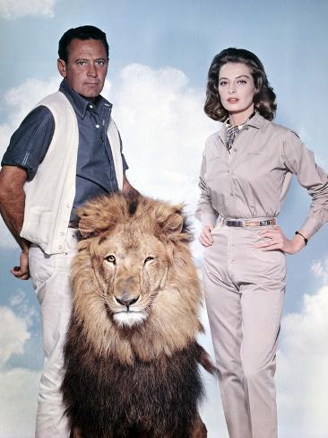 The Lion Photo