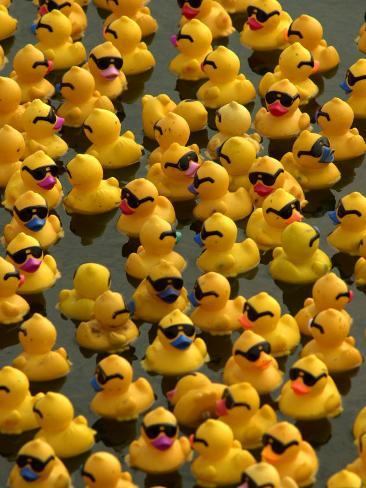 The Make-A-Wish Foundation Releases Rubber Ducks into the Ocean ...