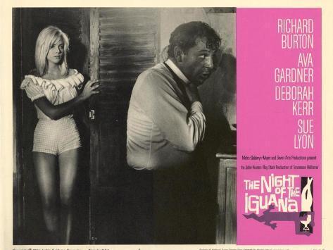 The Night of the Iguana, 1964 Art Print