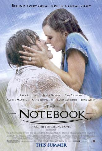 The Notebook Masterprint