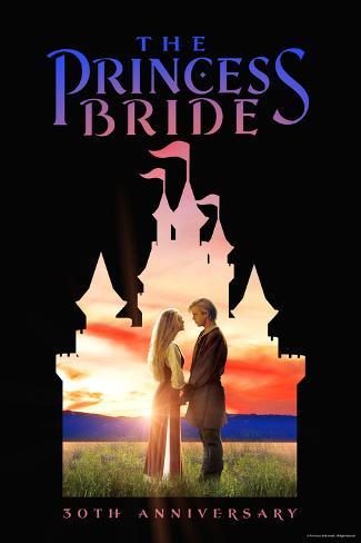 The Princess Bride 30th Anniversary Castle Poster