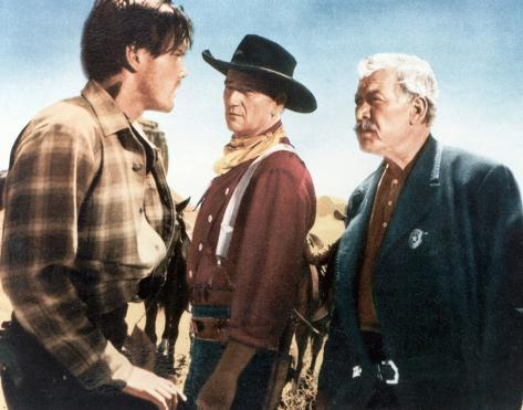 The Searchers Photo